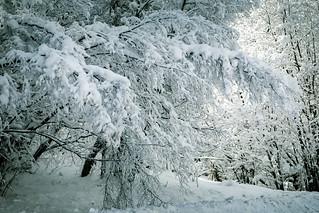 Below Zero ( Winter Series )