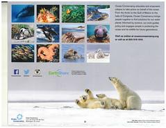 oceanCalendar2 (armadil) Tags: calendar freecycle