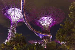 Sky Walk Singapore