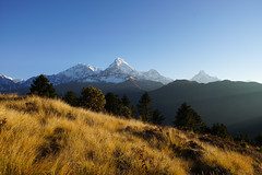 Sunrise at Poon Hill 3200m (Poxxel) Tags: nepal sunrise sonnenaufgang annapurna poonhill machapuchare annapurnahimal