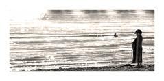 *Your Not Alone* (Poocher7) Tags: monochrome blackandwhite portrait people littleboy alone beach waves sparkles gull bird ripples baseballhat blanket daydreaming wondering thinking