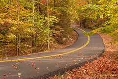 On the Road to Fall (Back Road Photography (Kevin W. Jerrell)) Tags: autumn autumncolors road pineville kentucky pinemountainstateresortpark bellcounty colorful fall backroadphotography nikond60 nature autumnbeauty alongtheway scenic countryroads mountains