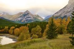 Catching a rainbow (John Andersen (JPAndersen images)) Tags: alberta fall kananaskis leaves rainbow wedgepond