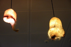 Scrotal skin lamps (A Cromwell) Tags: iceland island reykjavik phallus phallologicalmuseum
