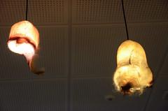 Scrotal skin lamps (A Cromwell) Tags: iceland island reykjavik phallus phallologicalmuseum