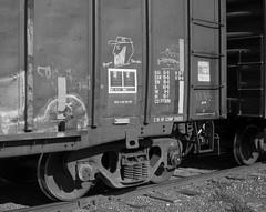 Railroad (orangedot777) Tags: freightcar freighttrain boxcar bluegrass bluecollar retribalize moniker