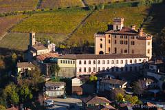 Le Langhe (beppeverge) Tags: barolo beppeverge colline dolcetto grapes italy landscape langhe moscato paesaggio roero uva vigna vigneti vineyard vino vitigni wine piemonte italia it