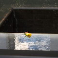 Remember (ellesmere FNC) Tags: september11 911 memorial worldtradetower remember ellesmerefnc reflections memorialpark 2001 newyork manhatten