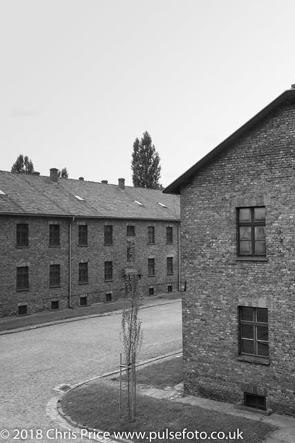 Auschwitz, Krakow
