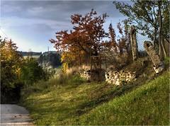 rear gate.. (lubokl47) Tags: gate autumn rear rural field garden panasonicgx7 takumar3535 pentax manuallens czech afternoon moravia svatoslav klime outdoor landscape