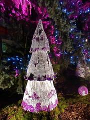 March de Nol de Pfastatt (Alsace) / 2 dcembre 2016 (leonmul68) Tags: pfastatt hautrhin 68 alsace france marchdenol 2016 dcembre2016 2dcembre2016 lumix tz35 panasonic