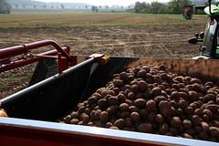 04-IMG_1900 (hemingwayfoto) Tags: ausstellung ernte erntemaschine europa kartoffel kartoffelroder messe roden spur