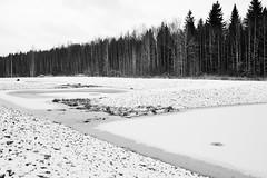 Winter-Landschaft (Finn-Foto) Tags: mfnikkor35mmf14ais uusimaa finnland nikond700 nikoncnx2 schwarzweiss hyvink fin