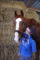 Tendresse (Cognacpomme (17 souche 44) ❀) Tags: cheval paille femme