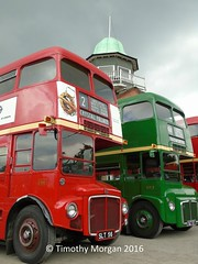 The Routemasters (_timothy_m) Tags: rt london transport bus busses red original old routemaster route master line up heritage display rm 1 2 first second