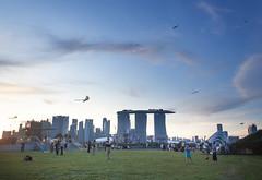 Kites at Marina Barrage (anastasia r) Tags: singapore city field kites marinabarrage marinabaysands skyscrapers