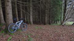 rolling arround (twinni) Tags: mw1504 20112016 bike biketour mtb winterradl bergziege winterbike 20 salzburg austria sterreich flachgau garmin oregon 700
