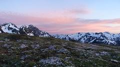 Dusk above Marmot Pass (Sean Munson) Tags: dusk flowers hiking landscape mountains nationalforest olympicnationalforest olympicpeninsula trail833 upperbigquilcenetrail upperbigquilcenetrail833 washington wildflowers