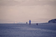 The dog walker (Nige H (Thanks for 7m views)) Tags: nature landscape beach burnhamonsea somerset england dog dogwalker