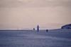 The dog walker (Nige H (Thanks for 7.5m views)) Tags: nature landscape beach burnhamonsea somerset england dog dogwalker
