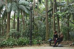 Casal se alcooliza no Parque Trianon (PortalJornalismoESPM.SP) Tags: casal catuaba homem mulher natureza parque parquetrianon alcool jovem amor liberdade poste