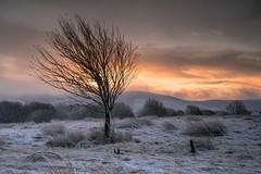 Winter Starts (.Brian Kerr Photography.) Tags: winter snow cold coldmorning sunrise leadhills wanlockhead sonyuk a7rii briankerrphotography visitscotland scotland