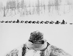 #A composite image of a baby and a funeral procession of a reindeer shepherd at fifty-five degrees below zero in the northern tundra of Evenkia, by Gennady Koposov, 1960s [2560X1979] #history #retro #vintage #dh #HistoryPorn http://ift.tt/2gxpVN2 (Histolines) Tags: histolines history timeline retro vinatage a composite image baby funeral procession reindeer shepherd fiftyfive degrees below zero northern tundra evenkia by gennady koposov 1960s 2560x1979 vintage dh historyporn httpifttt2gxpvn2