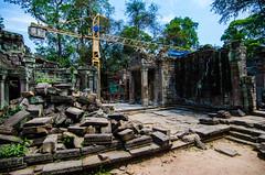 Crane (Arbron) Tags: cambodia taprohm asia2015 rajavihara siemreap temple   krongsiemreap kh