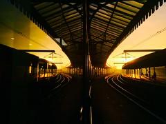 Sunshine On My Shoulders (sjpowermac) Tags: sunshine shoulder york reflection sunset railway station golden canopy spandrel waitingroom platform autumn november roof overheadwires catenary
