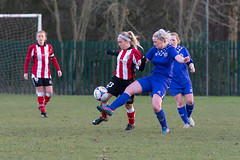Altrincham LFC vs Stockport County LFC - December 2016-143 (MichaelRipleyPhotography) Tags: altrincham altrinchamfc altrinchamlfc altrinchamladies alty amateur ball community fans football footy header kick ladies ladiesfootball league merseyvalley nwrl nwrldivsion1south nonleague pass pitch referee robins shoot shot soccer stockportcountylfc stockportcountyladies supporters tackle team womensfootball
