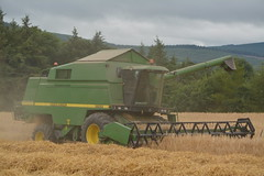 John Deere 2264 Combine Harvester cutting Winter Barley (Shane Casey CK25) Tags: john deere 2264 combine harvester cutting winter barley wb jd ballyhooly ballyhooley grain harvest grain2016 grain16 harvest2016 harvest16 corn2016 corn crop tillage crops cereal cereals golden straw dust chaff county cork ireland irish farm farmer farming agri agriculture contractor field ground soil earth work working horse power horsepower hp pull pulling cut knife blade blades machine machinery collect collecting mähdrescher cosechadora moissonneusebatteuse kombajny zbożowe kombajn maaidorser mietitrebbia nikon d7100
