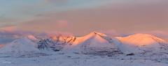 An Teallach Panorama (rdhphotos) Tags: dawn anteallach snow panorama scotland westerross morninglight mountain landscape