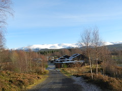 The Cairngorms from the Highland Wildlife Park, Nov 2016 (allanmaciver) Tags: cairngorms national park highland wildlife kincraig scotland mountains range snow distance natual habitat rare species forest allanmaciver