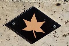 voie des Erables (bulbocode909) Tags: valais suisse panneaux voiedesrables isrables feuilles murs