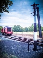 Train des Mouettes (K r y s) Tags: latremblade mornacsurseudre charentemaritime ostriculture trainvapeur plusbeauxvillagesdefrance saujon chaillevette