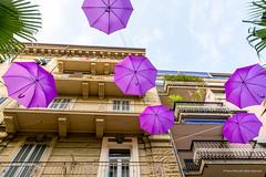 Purple district of Alassio, Liguria, Italy (Frans en Gerdi) Tags: del umbrella nikon riviera purple ngc fiori nikkor 1870 alassio lunaphoto urbanarte bloemenriviera d7100 colourartaward flickrunitedaward ligurgia