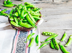 young green peas in the pod, earthenware dish, rustic background (harmonyandtaste) Tags: summer food color macro green nature closeup garden table wooden leaf vegan healthy pod raw pattern open view sweet eating background rustic group young seed objects nobody vegetable snap fresh crop vegetarian peas produce organic pea copy isolated freshness healthyfood legume
