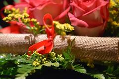 DSC_0138 (Oneiro Nauta) Tags: flowers macro rose bouquet laurea fiocco pergamena