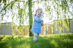 Day 154 (~ Maria ~) Tags: sun june outside 50mm toddler emma sunnyday birchtree day154 greengrass 2015 mariakallin 365project nikond800