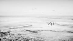 Cabo Cervera B&W (Rgdernio) Tags: agua paisaje escalera alicante horizonte torrevieja clavealta cabocervera nikond5100 rgdernio
