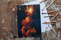 (Theresa Best) Tags: sunset camp nature shopping fire visions forsale mail bokeh snail best campfire theresa etsy greetingcard greeting snailmail sprouting mchenrycounty smallbusiness shopsmall theresabest sproutingvisions
