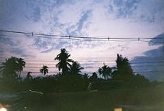 000032 (air_nastia) Tags: travel sunset sky film window analog palms thailand purple bangkok palmtrees fujifilm ontheroad ontheway