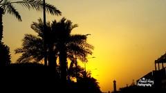 #  # # # # # #sun #sunset #pic #photo #myphoto (ahmadalberry16) Tags: sunset sun photo pic  myphoto