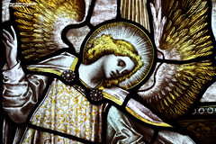 Close up detail of stained glass (Nigel Blake, 12 MILLION...Yay! Many thanks!) Tags: uk windows church glass st mary norfolk stained virgin titchwell nigelblake nigelblakephotography