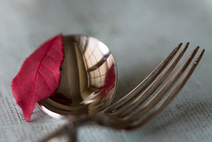 Serving Up Autumn (Captured Heart) Tags: reflection utensils leaf silverware fork spoon serving flatware silverspoon macromondays
