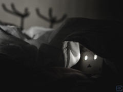 are ghosts real? (ercan.cetin) Tags: night dark real quilt fear ghost olympus blanket horror geist angst duvet gece hayalet danbo affright danboard sigma60mm omdem10