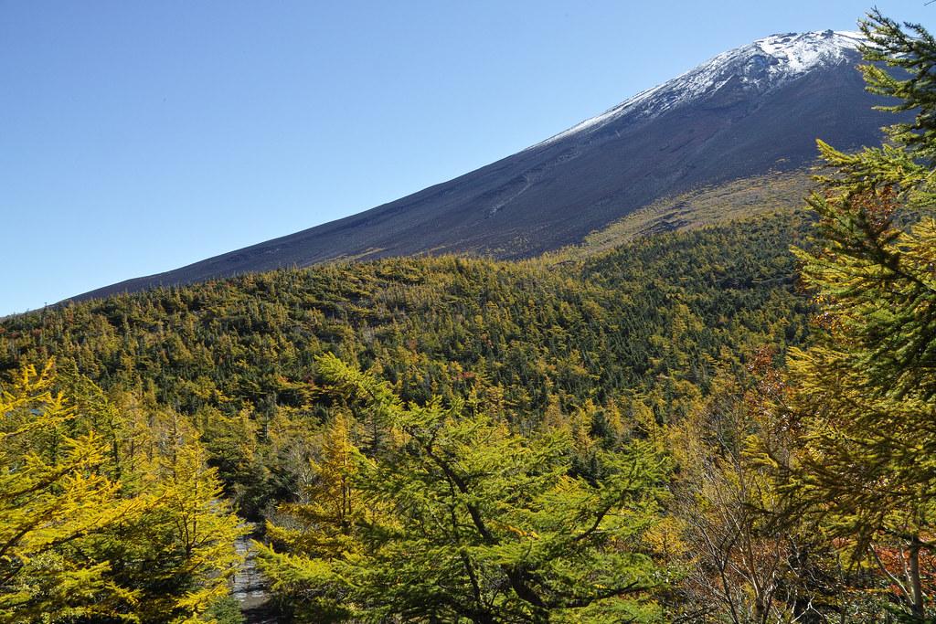 Mt. Fuji in Colors
