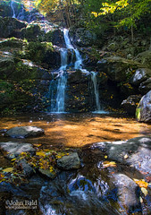 Autumn Scene, Dark Hollow Falls, Shenandoah National Park, Virginia (74163-74164) (John Bald) Tags: autumn fall forest virginia waterfall foliage shenandoah cascade shenandoahnationalpark forestpool darkhollowfalls darkhollow