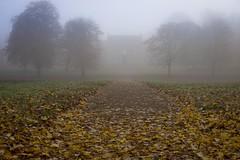 Great Linford Manor in the Mist. (www.stevengreenphotogallery.com) Tags: uk autumn trees england mist leaves fog unitedkingdom britain gb manor linford greatlinford giffardpark miltonkeyes