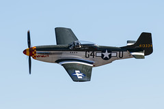 "P-51 Mustang ""Wee Willy II"" (Trent Bell) Tags: california airport aircraft socal mustang warbird p51 murrieta 2015 frenchvalley weewillyii"